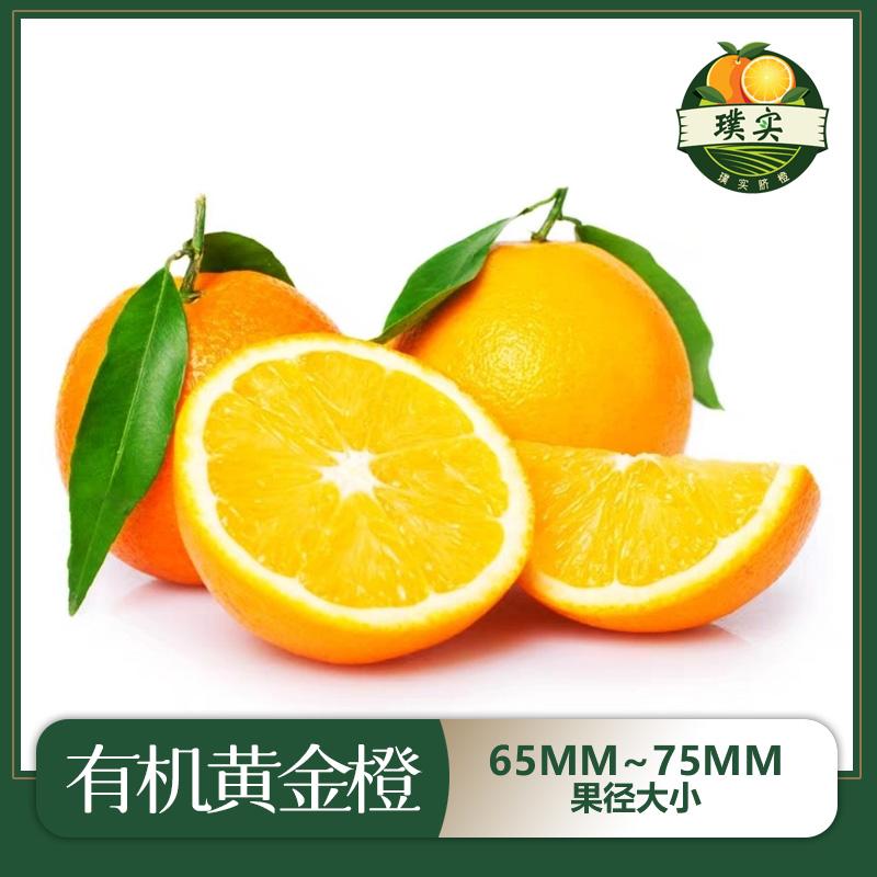 精品赣南有机脐橙65mm~75mm果径