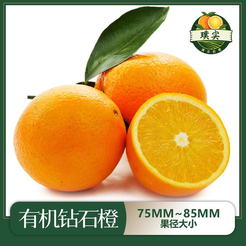 特级赣南有机脐橙75mm~85mm果径
